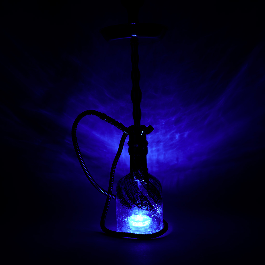 base led chicha