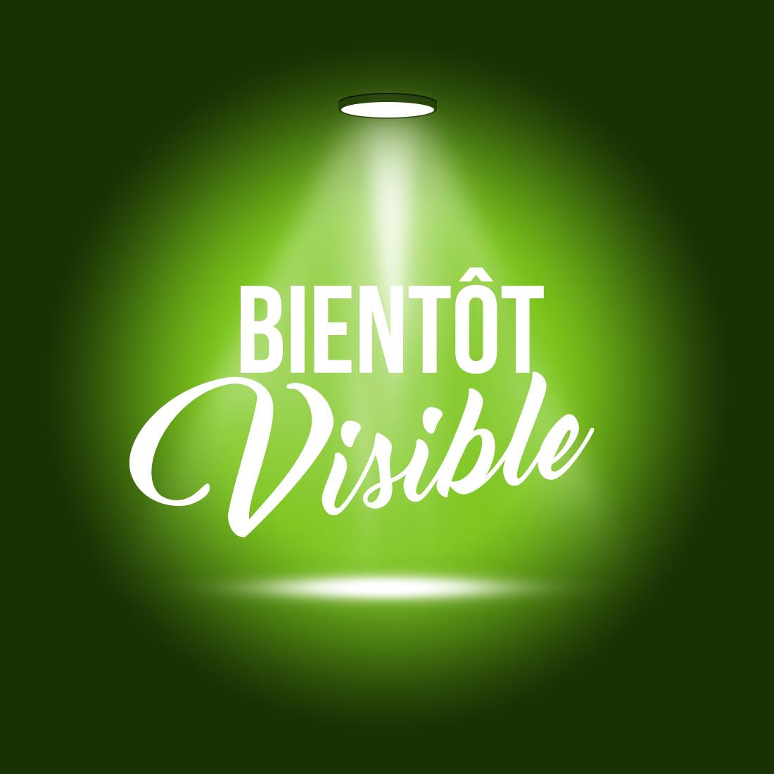 BUBBLER GRACE GLASS GREEN SPIRAL