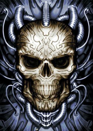 poster-skull-face_bis