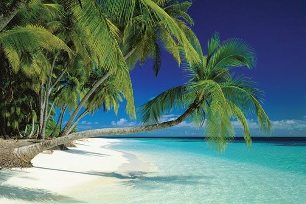 Poster Maldive